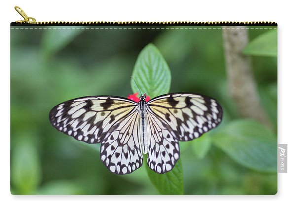 Carry-all Pouch featuring the photograph Perfect Butterfly Pose by Raphael Lopez