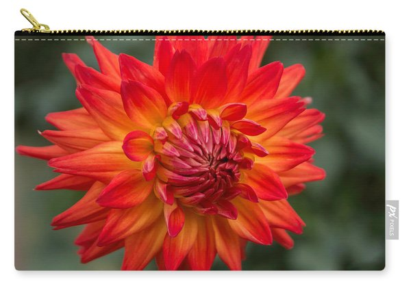 Perfectly Dahlia Carry-all Pouch