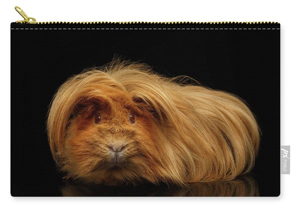 Carry-all Pouch featuring the photograph Trump Guinea  by Sergey Taran