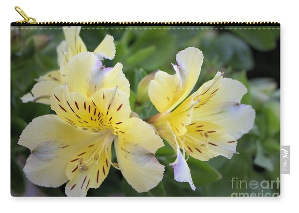 Peruvian Lily 2 Carry-all Pouch