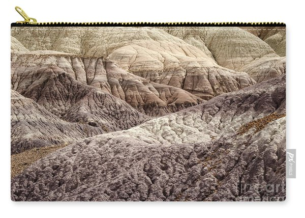 Petrified Forest National Park 2 Carry-all Pouch
