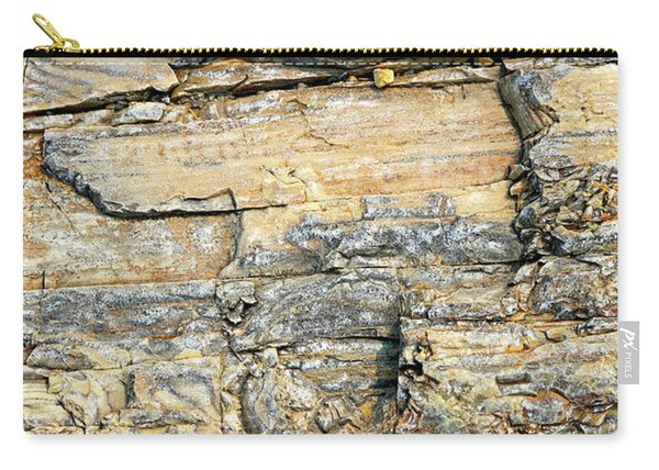Petrified Wood Nature Abstract Carry-all Pouch