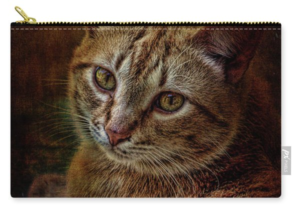 Pets Fat Cat Portrait 2 Carry-all Pouch
