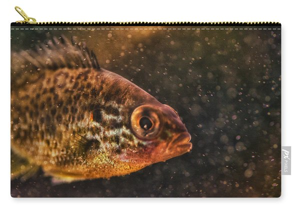 Pices In Aquarium Carry-all Pouch