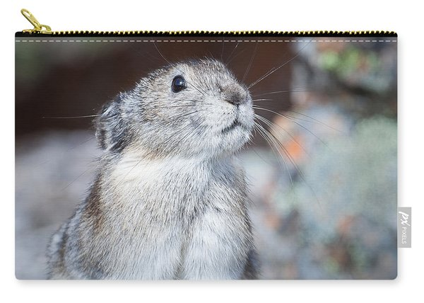 Carry-all Pouch featuring the photograph Pika Portrait by Tim Newton