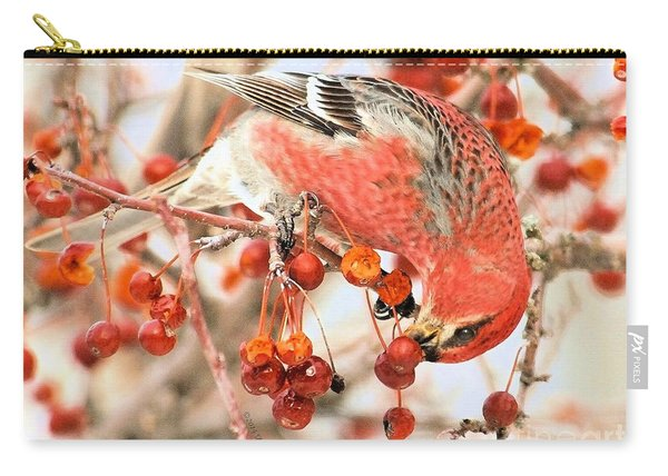 Pine Grosbeak Carry-all Pouch