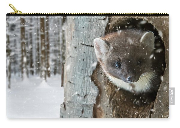 Pine Marten In Tree In Winter Carry-all Pouch