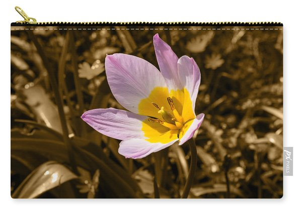 Pink And Yellow Tulip On Sepia Background Carry-all Pouch