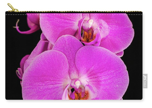 Pink Orchid Against A Black Background Carry-all Pouch