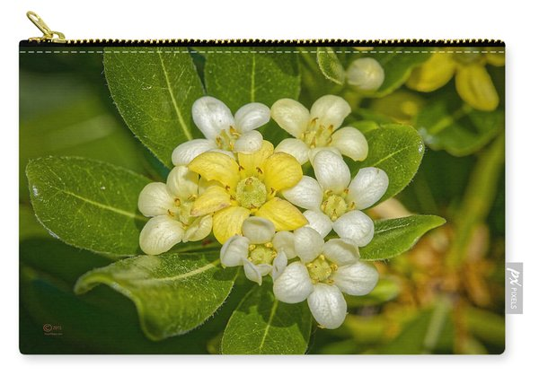 Pittosporum Flowers Carry-all Pouch