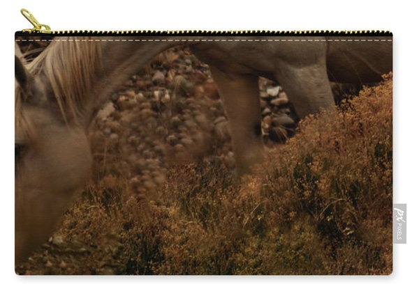 Carry-all Pouch featuring the photograph Placitas 6 by Catherine Sobredo