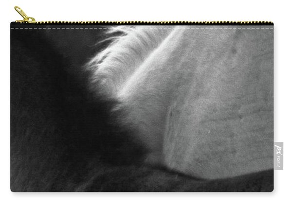 Carry-all Pouch featuring the photograph Placitas 9 by Catherine Sobredo