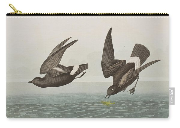 Plate 340 Least Stormy-petrel Carry-all Pouch