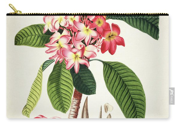Plumeria Botanical Print Carry-all Pouch