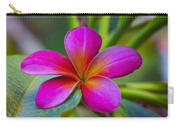 Plumeria On Leaf Carry-all Pouch