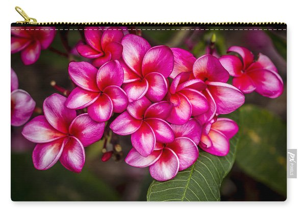 Plumeria Profusion Carry-all Pouch