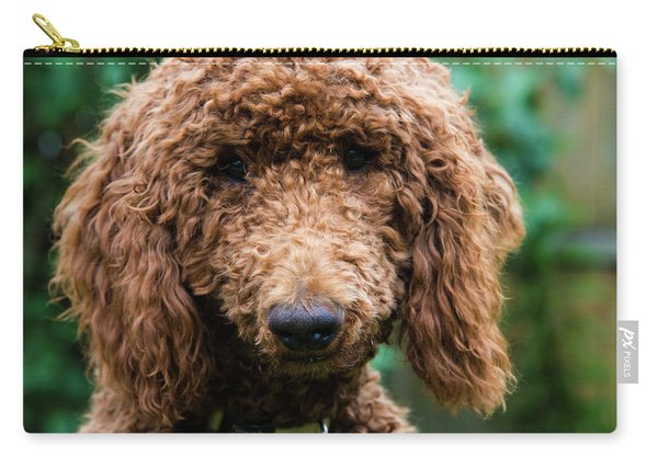 Poodle Pup Carry-all Pouch