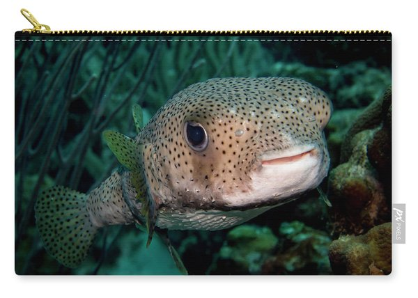 Porcupine Fish Carry-all Pouch