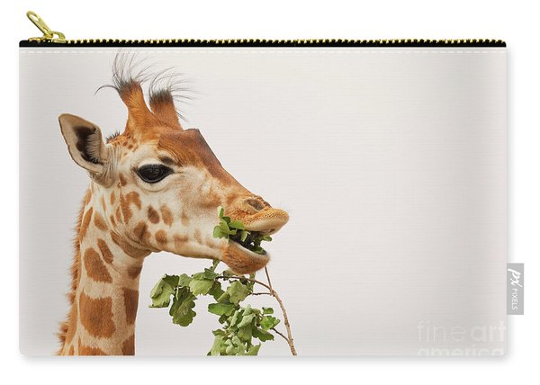 Portrait Of A Rothschild Giraffe IIi Carry-all Pouch