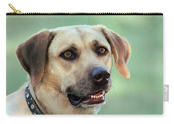 Portrait Of A Yellow Labrador Retriever Carry-all Pouch