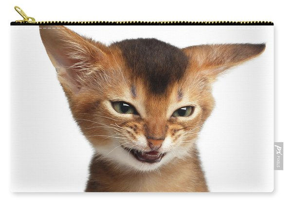Portrait Of Kitten With Showing Middle Finger Carry-all Pouch