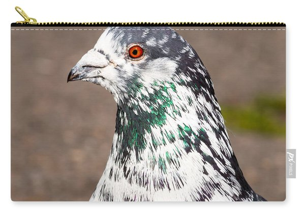 Portrait Of Pigeon Carry-all Pouch