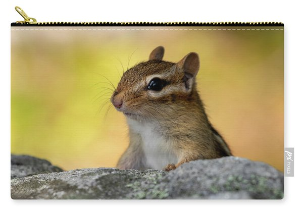 Posing Chipmunk Carry-all Pouch
