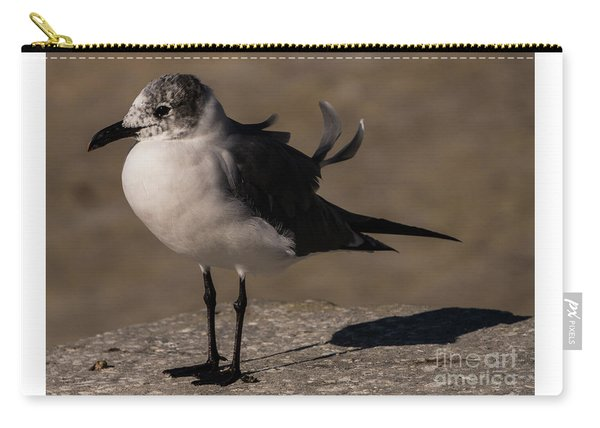 Posing Laughing Gull Carry-all Pouch