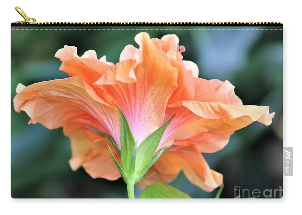 Posterior Tropical Beauty Carry-all Pouch