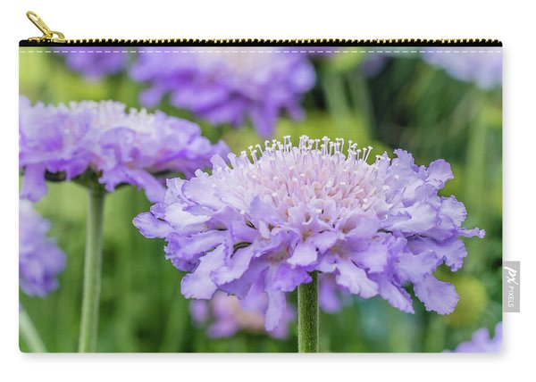 Carry-all Pouch featuring the photograph Pretty Purple by Nick Bywater