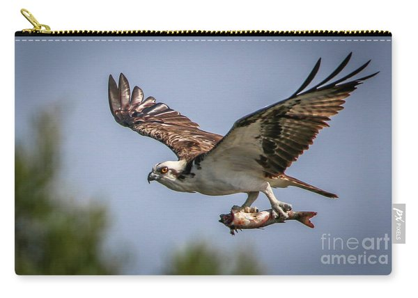 Carry-all Pouch featuring the photograph Prey In Talons by Tom Claud