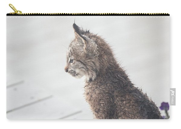 Carry-all Pouch featuring the photograph Profile In Kitten by Tim Newton