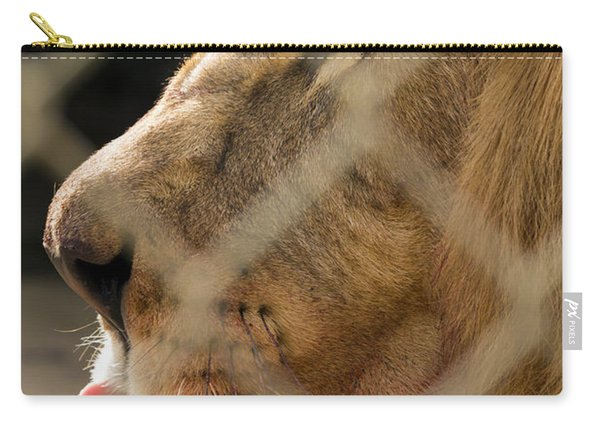Profile Of A King Carry-all Pouch