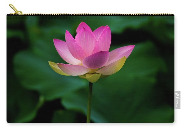 Profile Of A Lotus Lily Carry-all Pouch