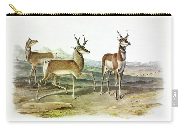Prong-horned Antelope Carry-all Pouch