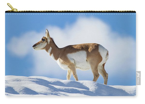 Pronghorn Doe On Snowy Ridge Carry-all Pouch
