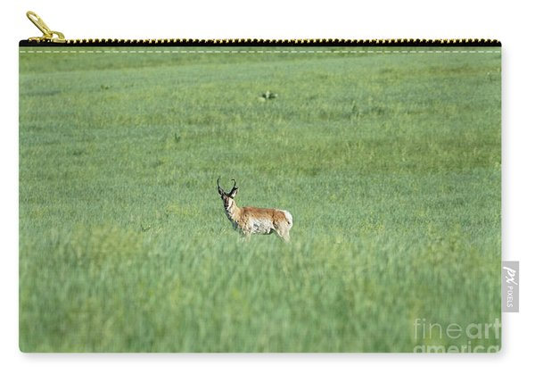 Carry-all Pouch featuring the photograph Pronghorn In A Sea Of Green by Bill Gabbert