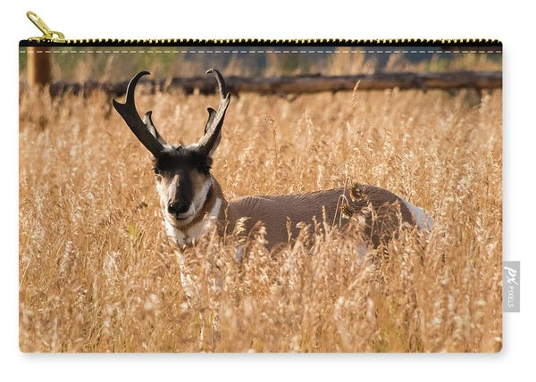 Pronghorn Carry-all Pouch