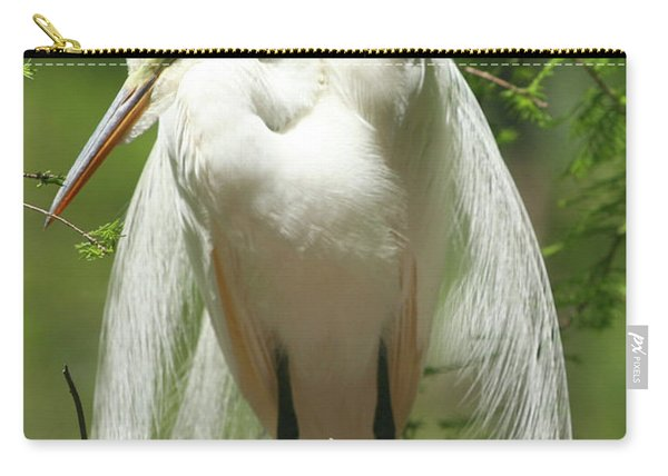 Protecting Carry-all Pouch