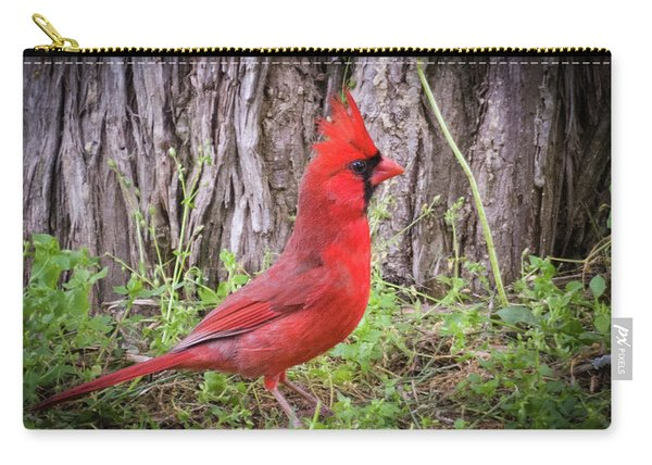 Proud Cardinal Carry-all Pouch