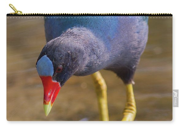 Purple Gallinule Bigfoot Carry-all Pouch