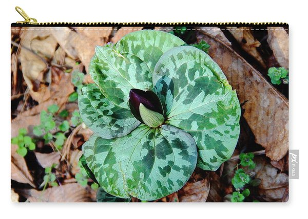 Purple Toadshade Trillium Carry-all Pouch