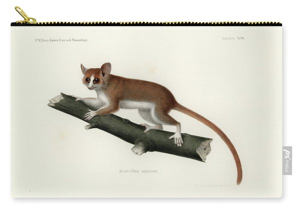 Pygmy Mouse Lemur Carry-all Pouch