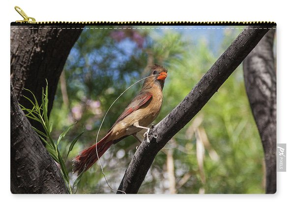 Pyrrhuloxia At Work Carry-all Pouch