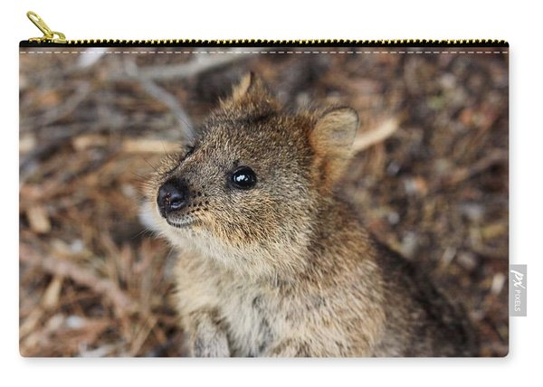 Quokka Carry-all Pouch