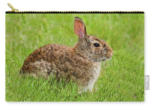 Rabbit In A Grassy Meadow Carry-all Pouch