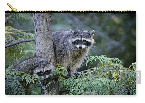 Raccoons In Stanley Park Carry-all Pouch