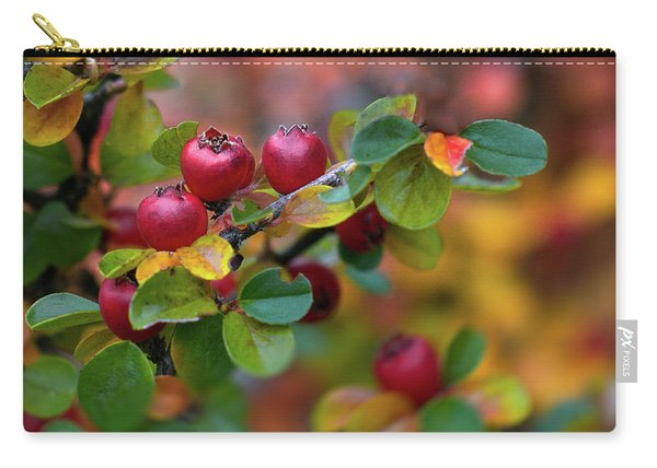 Carry-all Pouch featuring the photograph Ramona's Berries by Susan Warren