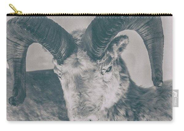 Rams Carry-all Pouch