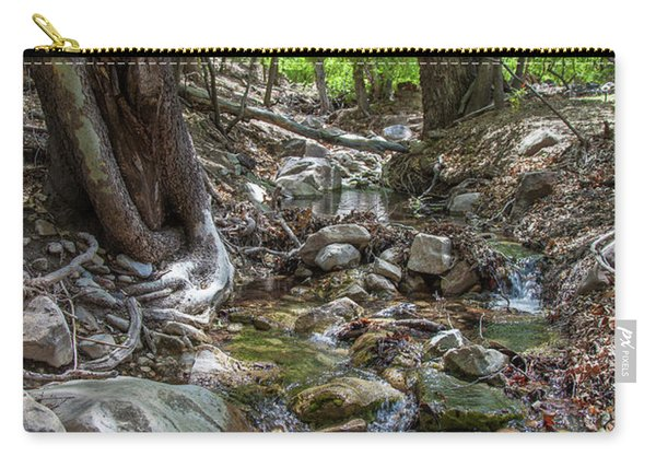 Ramsey Canyon Preserve Carry-all Pouch